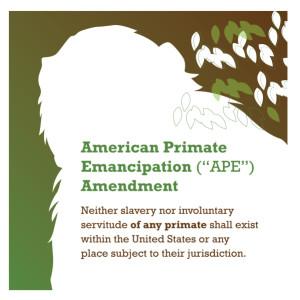 APE Amendment_2